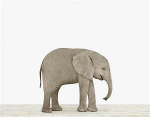 Elephant Appreciation Day Preschool Activities - The Early ...