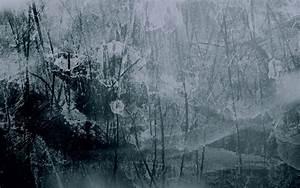 Window Glass Texture - WallDevil