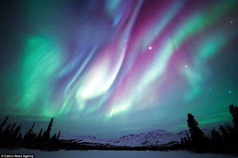 denali national park northern lights images of america 39 s national parks in winter daily mail
