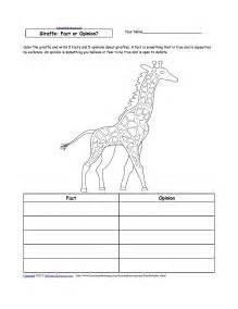 28 Giraffe Life Cycle Diagram