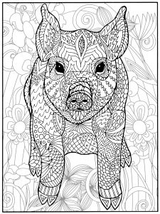 Pug Coloring Pages for Adults