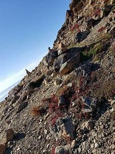 create a phone list flattop mountain trail alaska alltrails