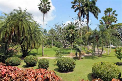 parks  gardens destination trinidad  tobago tours
