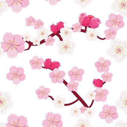 Seamless Pattern Japan Flowering Cherry Tree Branches With