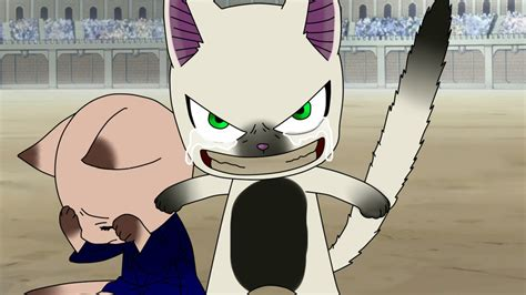 Fairy Tail Exceed Maker Mungfali