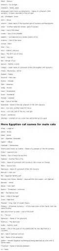ancient cat names cat names names for cats