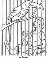 Zoo Coloring Animals Printable Animal Birds Sheets Cage Bird Toucan Cages Colouring Sheet Cartoon Zoos Children Activity Exhibit Honkingdonkey Wild sketch template