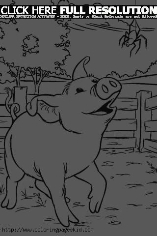 charlotte web coloring pages   printable