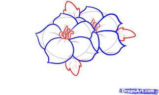 How to Draw Flower Designs