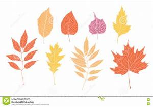 Hand Drawn Vector Illustrations. Set Of Fall Leaves ...