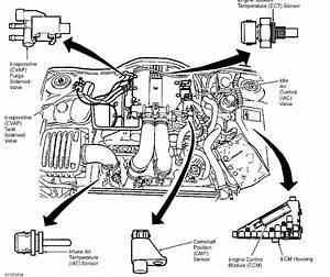 Cadillac Catera Water Pump Replacement