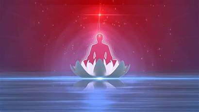 Brahma Lotus Yoga Yogi Wallpapers Baba Kumaris