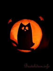 Halloween Basteln Gruselig : k rbisse basteln zu halloween k rbis mit eulen motiv ~ Whattoseeinmadrid.com Haus und Dekorationen