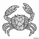 Crab Zentangle Tattoo Vector Cancer King Stylized Drawing Coloring Sea Pages Es Geometric Designs Adult Background Backgrounds Clip Illustrations Outline sketch template