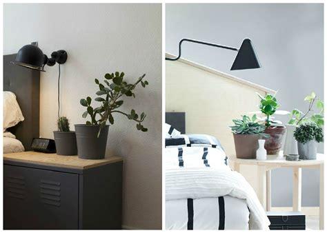 plantes dépolluantes chambre à coucher quelle plante pour une chambre a coucher atlub com