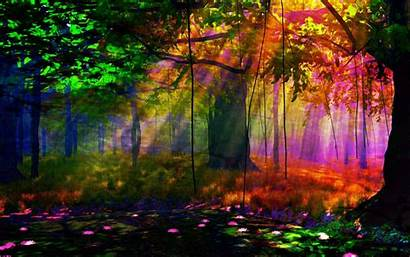Forest Wallpapers Artistic Colors Widescreen Pc Sunlight