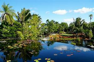 Why You Must Visit the Naples Botanical Garden in Naples, FL