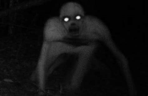 Scp 801
