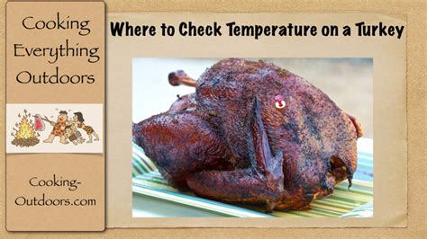temp of turkey where to check temperature on a turkey easy grilling tips