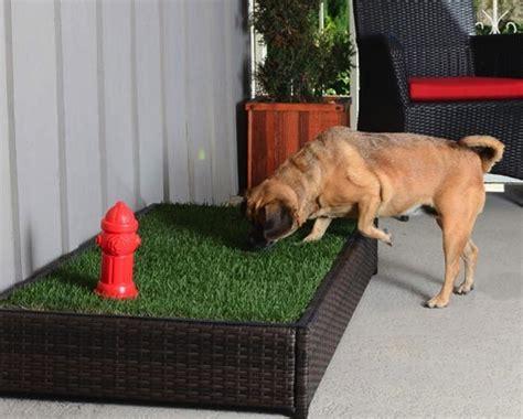 porch potty hundetoilette mit hydrant und rasen foerderland