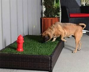 porch potty hundetoilette mit hydrant und rasen forderland With französischer balkon mit absperrung für hunde im garten
