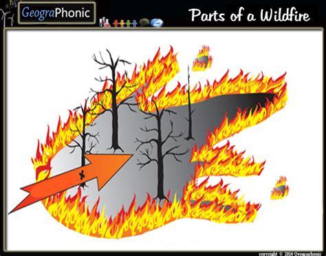 Parts Of A Wildfire Purposegames
