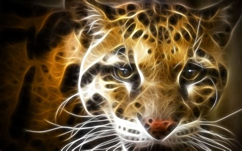 Colourful Animal Wallpaper - colorful creative animal wallpaper 7 animal wallpapers