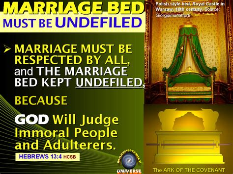 marriage bed is undefiled the marriage and family universe rh 15 rh and