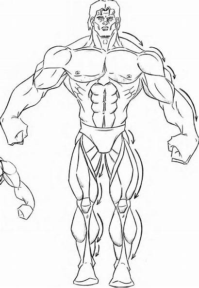 Drawing Muscle Muscles Muscular Comics Arm Guy