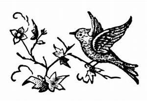 Vintage Clip Art - Printer Ornaments - Birds and Frame ...