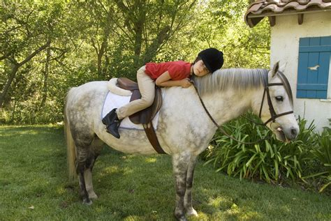 pony horse breeds welsh riding children choice photographer child connell kate getty strip popular