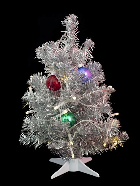 photo of mini tree free images