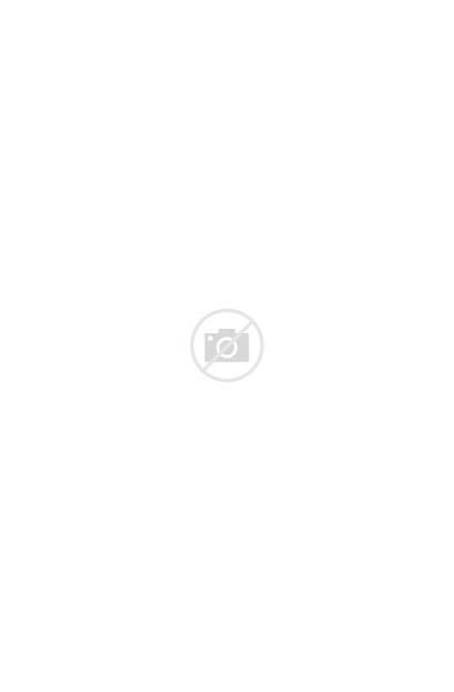 Tomato Plant Mistakes Problems Growing Gardening Garden