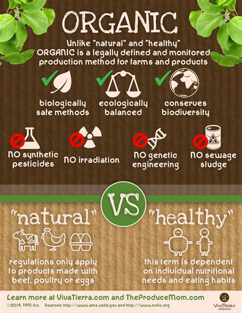 cuisine meaning what is organic food definition and environmental benefits