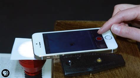 See Microbes With This Diy Phone Microscope Youtube