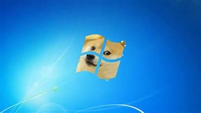 Meme Wallpapers Doge Memes Really Wallpaperboat