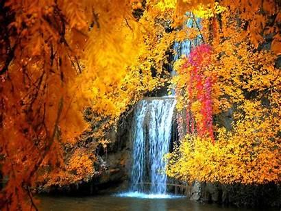 Fall Screensaver Autumn Desktop Examples Screensavers Lovely