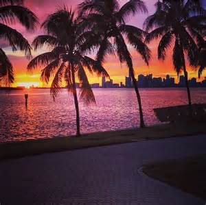 miami sunset pictures photos and images for