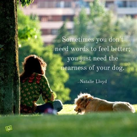 dog quotes  people  love dogs dogs dog quotes