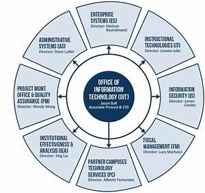 Organization Chart   Florida Atlantic University