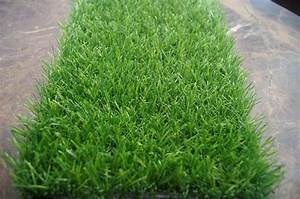 25mm Turf, Artificial Grass in Dubai, Dubai Interiors