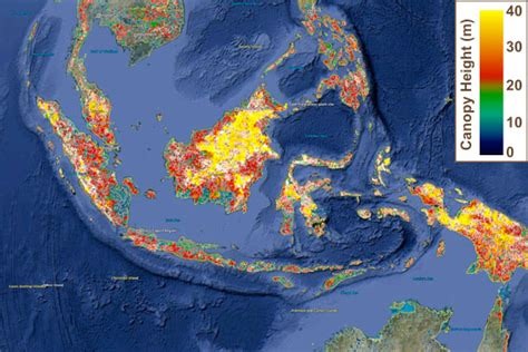 google earth nasa updates global forest height map