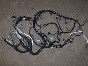 1998 Camaro Ls1 T56 Engine Wire Harness - Ls1tech