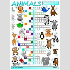 Animals  Crossword  School  Pinterest  Animal, English And Worksheets