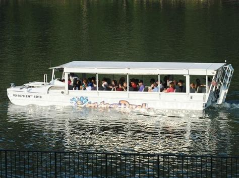 Duck Boat Tours Coupons by In The Water Picture Of Ride The Ducks Of Branson