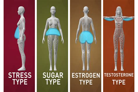 What New Body Type Are You?