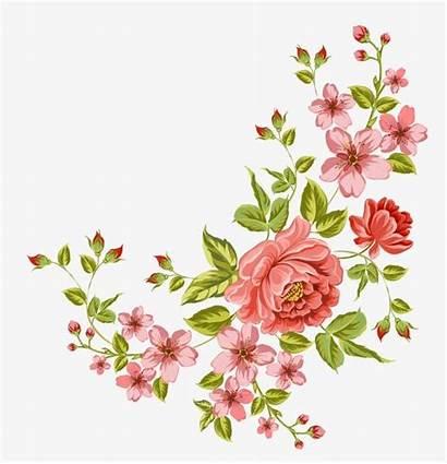Flower Transparent Flowers Corner Background Clipart Clip