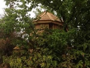 Constructeur Cabane Dans Les Arbres : cabane avec la tour nidperch constructeur de cabane ~ Dallasstarsshop.com Idées de Décoration