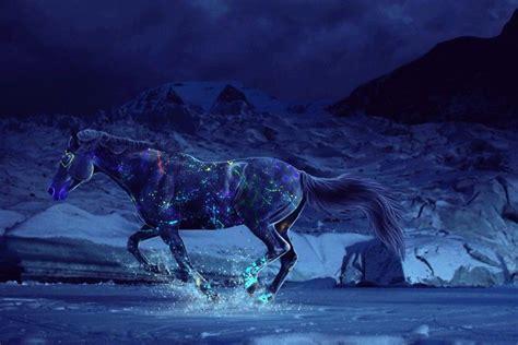 Horse Desktop Backgrounds ·① Wallpapertag