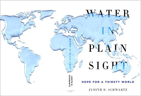 Book Review 'water In Plain Sight,' By Judith Schwartz